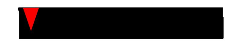 VizFact Dot Com